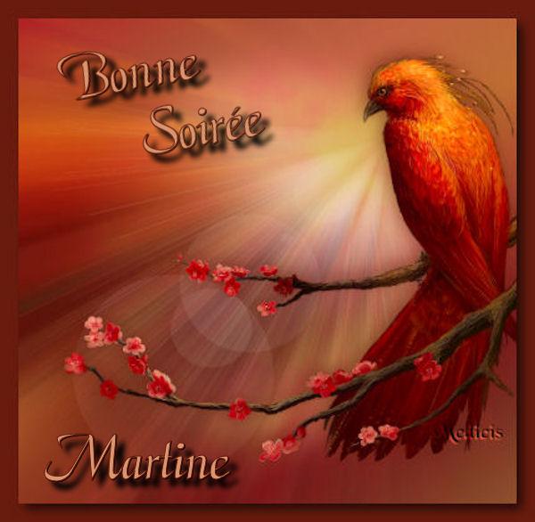 BONNE SOIREE DU LUNDI Oiseau-448be47